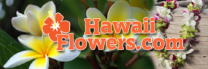 HawaiiFLowersLink